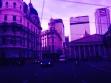 purple bue